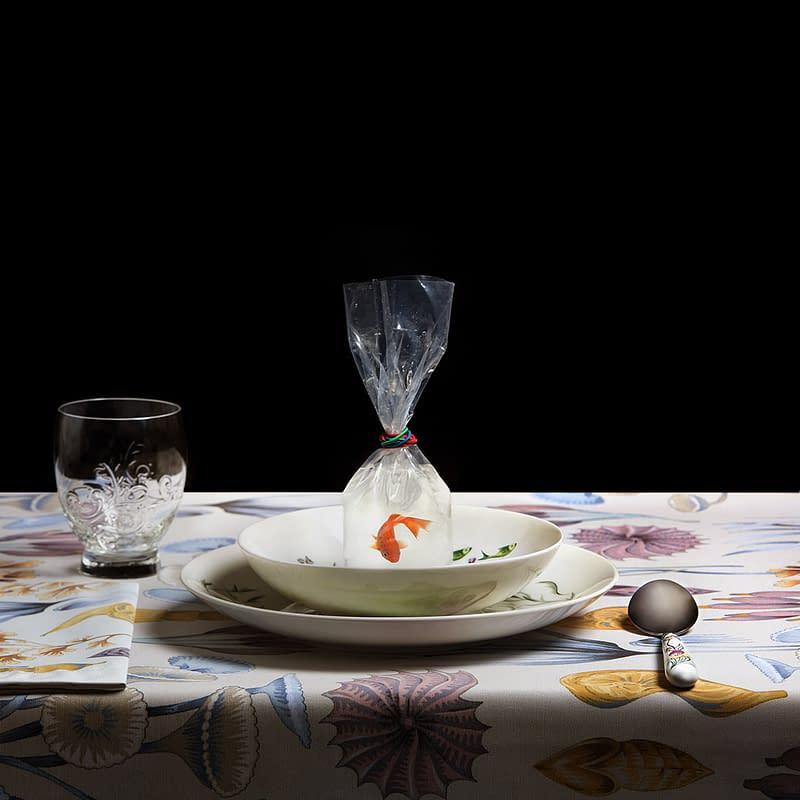 Sopa número 13. Miguel Vallinas fotógrafo.