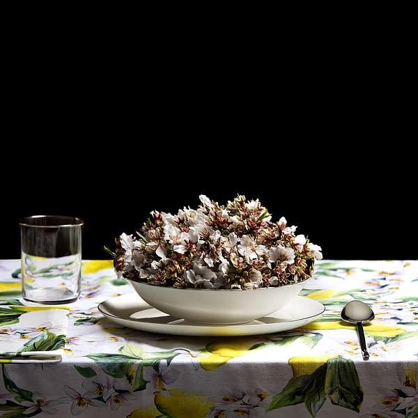 Sopa número 23. Comprar Arte Online, fotografía de Miguel Vallinas.
